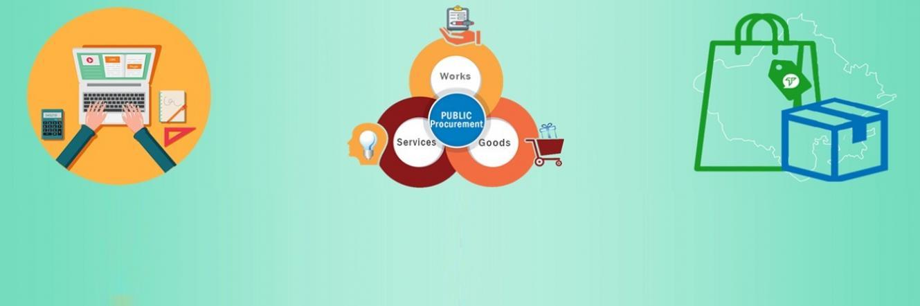 Public Procurement (Basic)